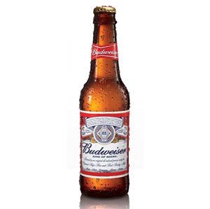 Top 10 Best Beer Brands with Price in India 2018 - Most ...