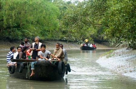 Sundarban Night sail