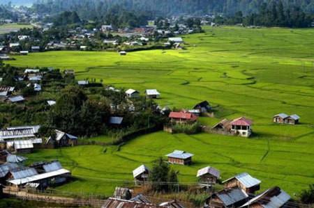 Ziro, Arunachal Pradesh