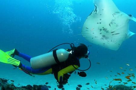 Scuba Diving – Tarkarli
