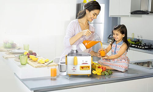 Juicer Mixer Grinder in India