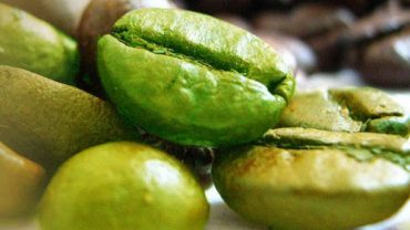 Best Green Coffee in India