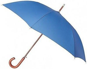 Totes Blue Line Umbrella